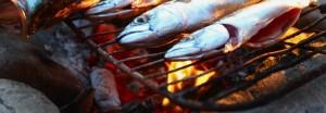 fishpiknik2